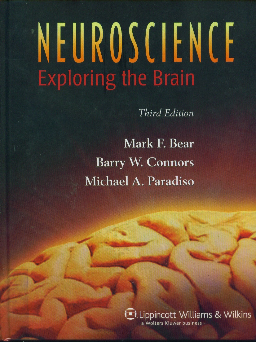 Neuroscience : exploring the brain