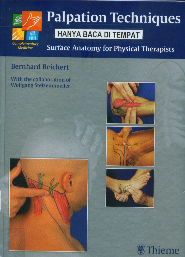 Palpation techniques : surface anatomy for physical therapists